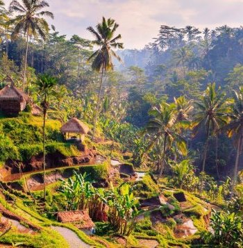 Indonesien Rundreisen Pauschalreisen Mit Exoticca